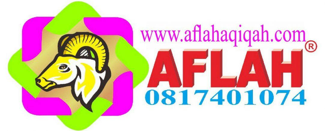 Aflah Aqiqah